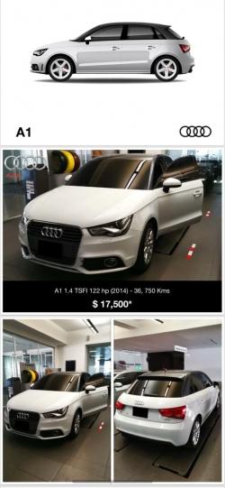Audi Regesa 2014, Nítido