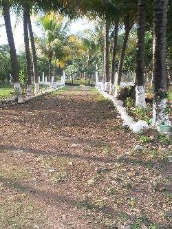 Amplio terreno con casa en Aldea Las Cabezas, Oratorio